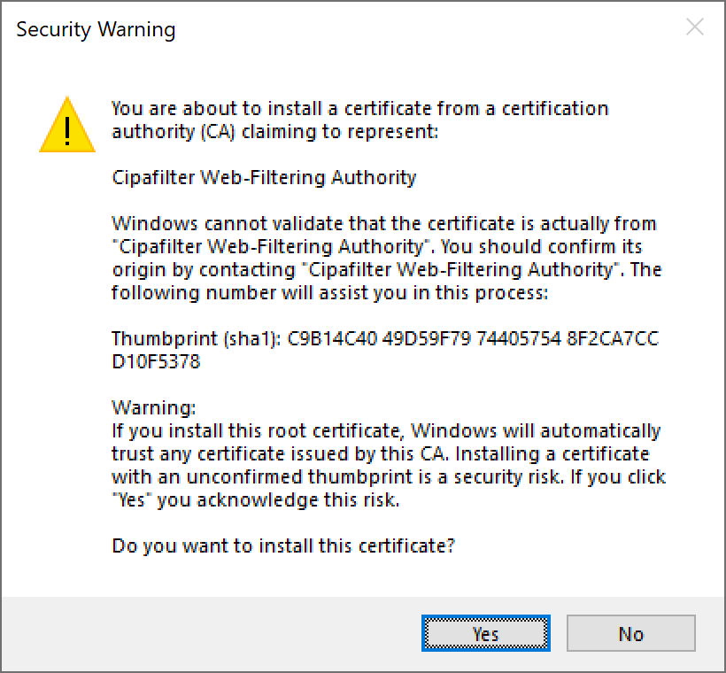Windows Security Warning dialogue